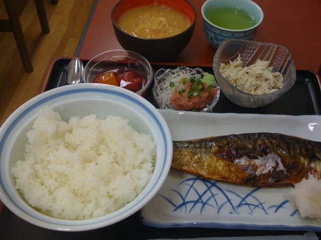 今日のお昼は焼きサバ定食550円!